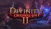 Divinity: Original Sin 2 cover art
