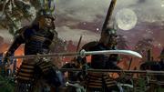 Total War Shogun 2 screenshot 8
